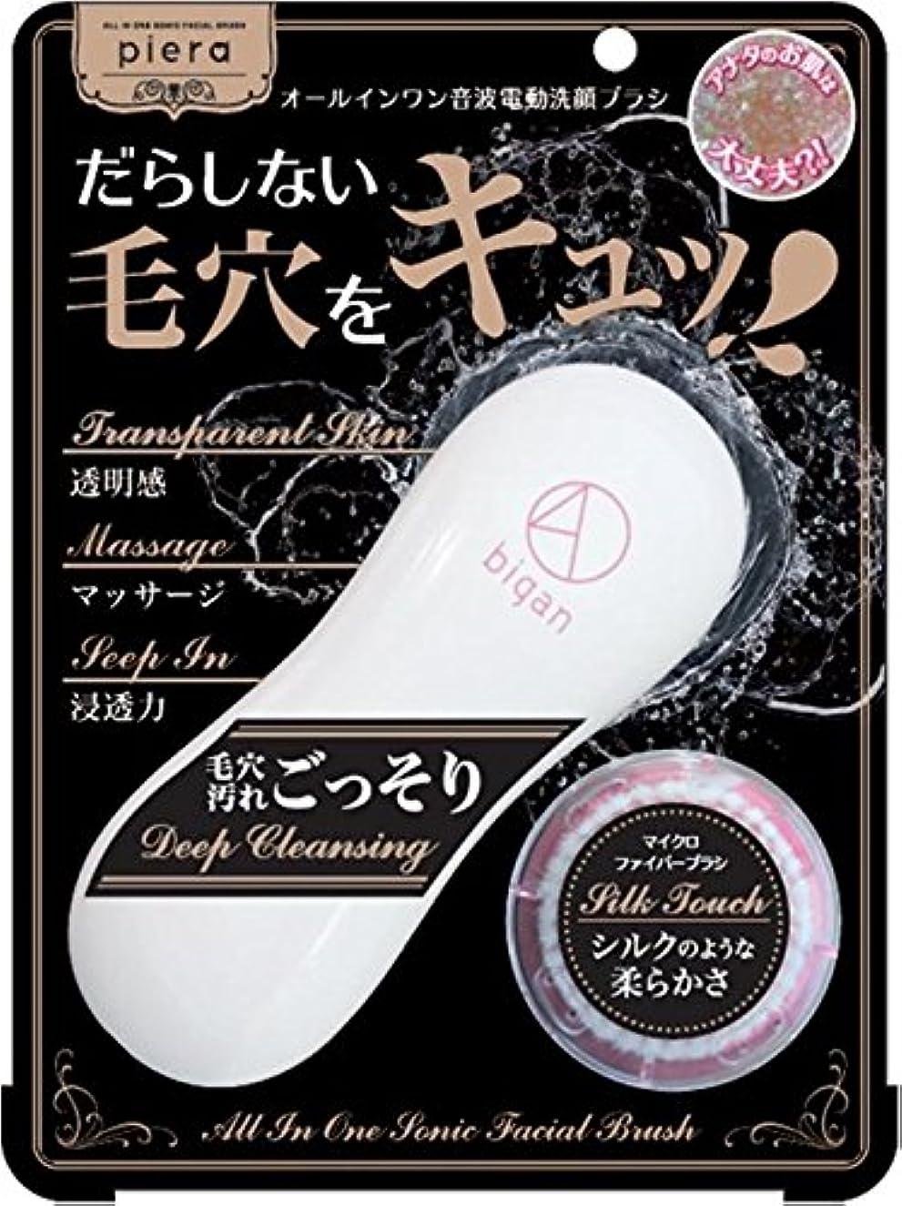 頑張る消毒剤クライストチャーチイシザワ ピエラ 電動洗顔ブラシ4D bigan 1個