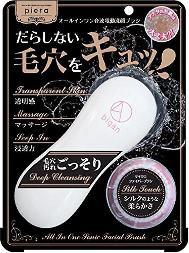 スナッチ回復円形イシザワ ピエラ 電動洗顔ブラシ4D bigan 1個