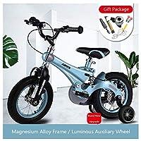 3-9歳の子供のための子供の自転車、子供のための乳児用自転車、12インチ、14インチ、16インチ、マグネシウム合金ディスクブレーキ、補助ライトホイール。,Blue,12inch