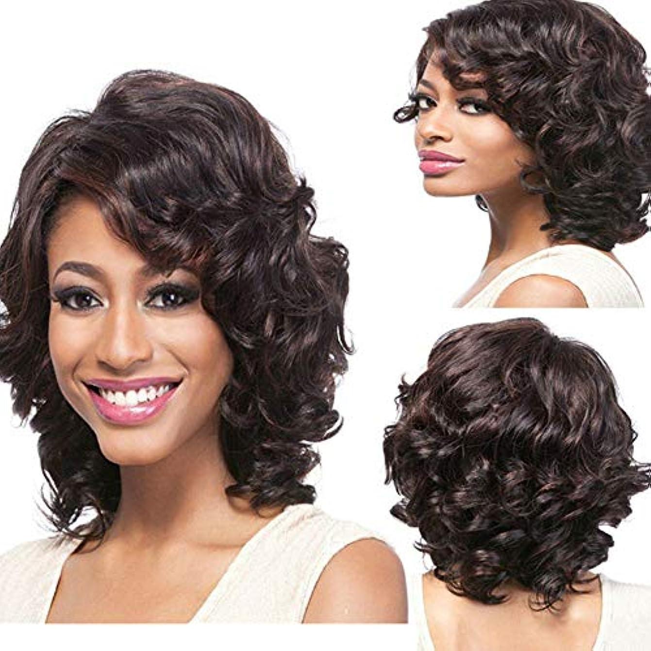 空港部族農業YOUQIU 女子サイドショートカーリーヘアウィッグ斜め前髪は染色高温シルク化学繊維ヘアウィッグウィッグを選びます (色 : Photo Color, サイズ : 30~32cm)