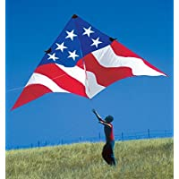 19ft. Patriotic Delta Kite by Premier Kites [並行輸入品]
