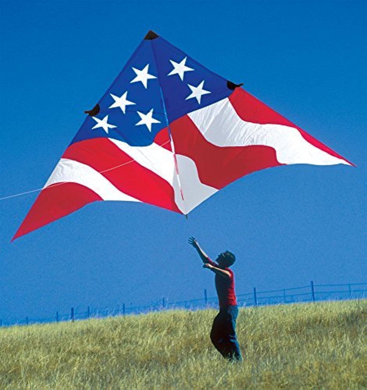 19ft. Patriotic Delta Kite by Premier Kites [並行輸入品]