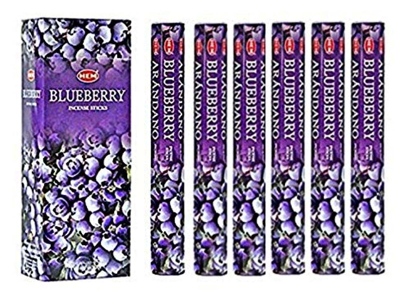 屈辱するトン外部Blueberry - Box of Six 20 Stick Tubes, 120 Sticks Total - HEM Incense by HEM 6 Pack 20 Stick