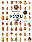 ひろった・あつめた ぼくのドングリ図鑑 (ちしきのぽけっと12)