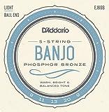 D'Addario ダダリオ バンジョー弦 フォスファー Light 5弦 ボールエンド .009-.020 EJ69B 【国内正規品】