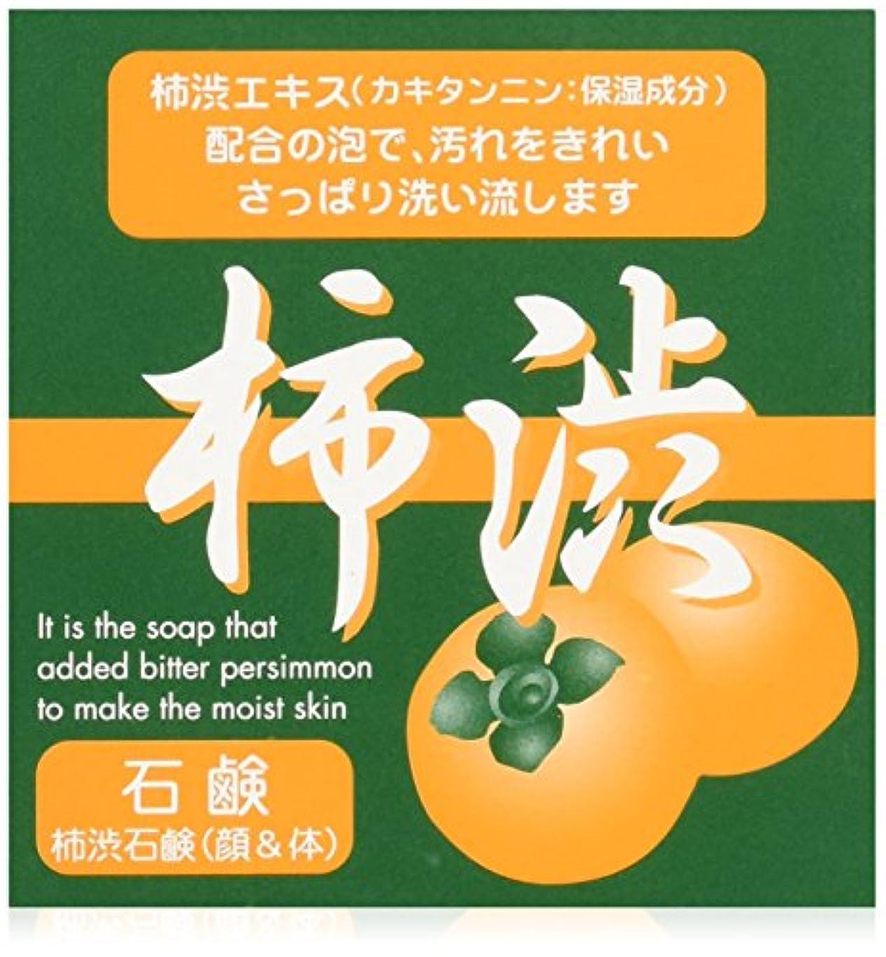広がり残る下向きシンライ柿渋石鹸 100g