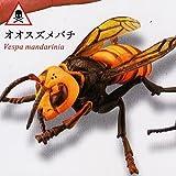カプセルQミュージアム 衛生害虫博覧会 身近に潜む生活害虫 [1.オオスズメバチ](単品)