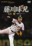 藤川球児・気力一瞬~熱闘の46セーブ~[DVD]