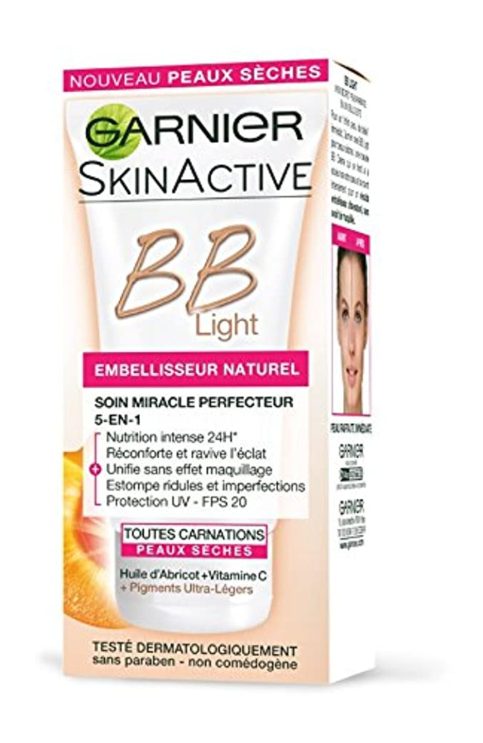 予防接種煙小麦粉Garnier Skin Active BB Light