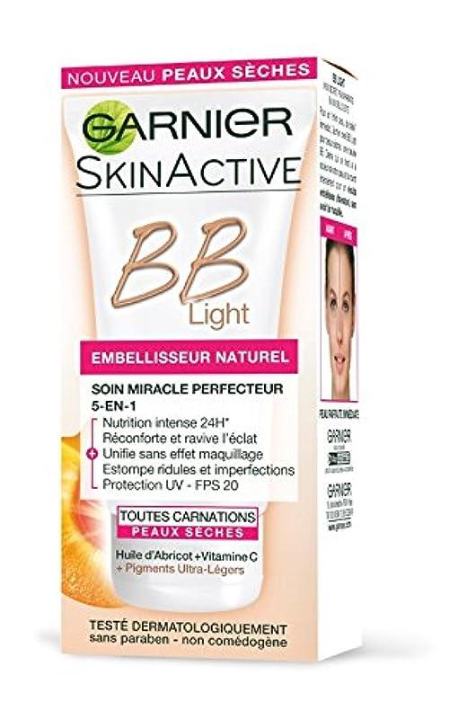 秀でる世論調査アサートGarnier Skin Active BB Light