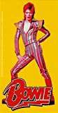 David Bowie???Posing in Striped Jumpsuit with Logo onイエロー???ステッカー/デカール