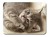 かわいい灰色子猫、睡眠、顔、目 パターンカスタムの マウスパッド 動物 (22cmx18cm)