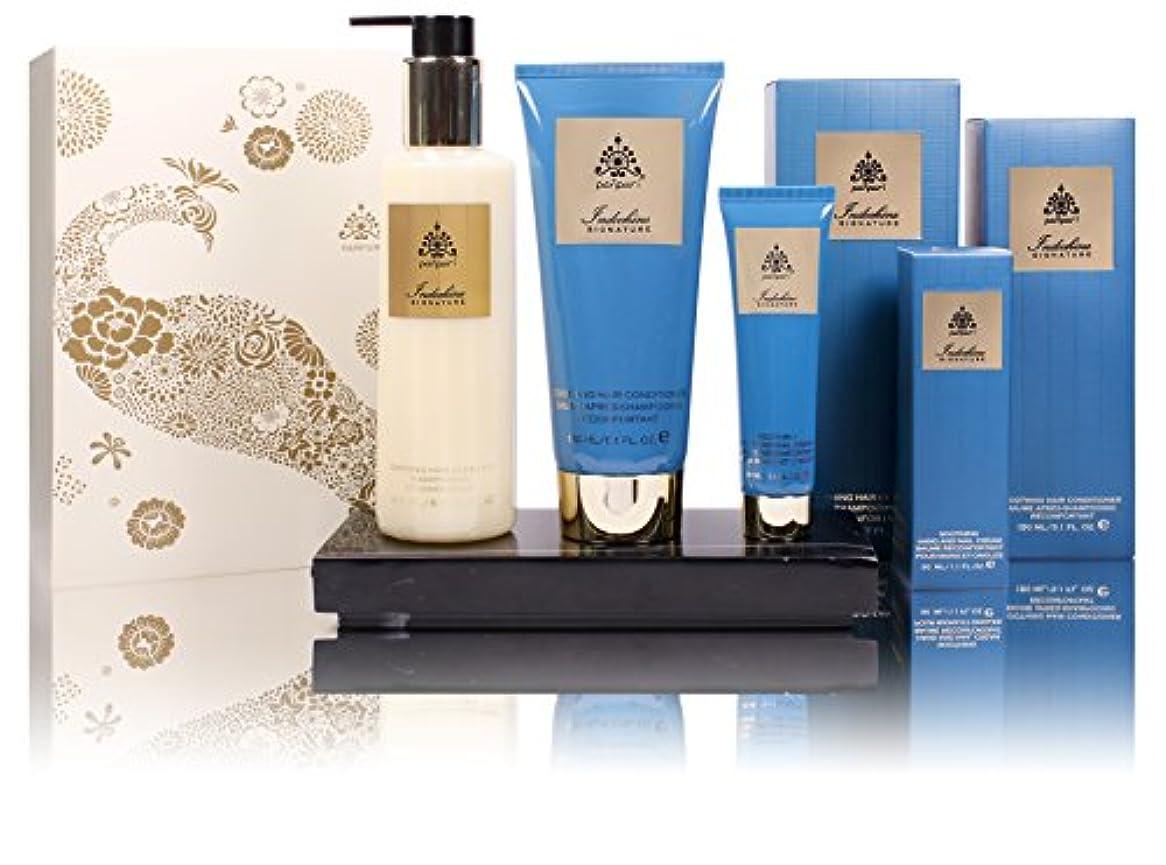 順応性のある記念品ピルパンプリーなだめるような髪の補充ギフトセット、レモングラス&マンダリン、430 ml