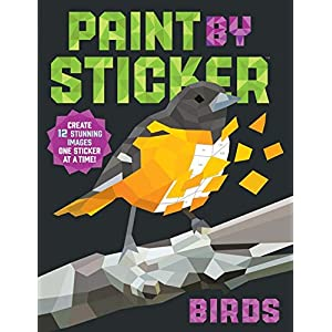 Birds: Create 12 Stunning Images One Sticker at a Time! (Paint by Sticker)