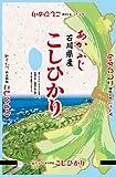 【精米】石川県産 白米 こしひかり 5kg 平成29年産