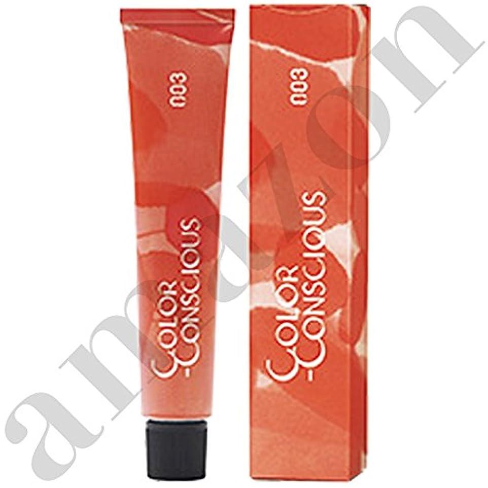 切手フルーティー全体【ナンバースリー】カラーコンシャス ファッションライン #8C (クールブラウン) 80g
