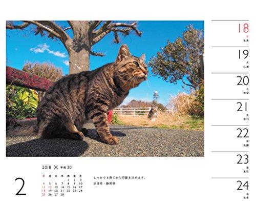カレンダー2018 岩合光昭×ねこ 週めくり卓上 (ヤマケイカレンダー2018)