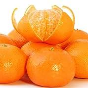 和歌山蜜柑 食べやすい2Sサイズ