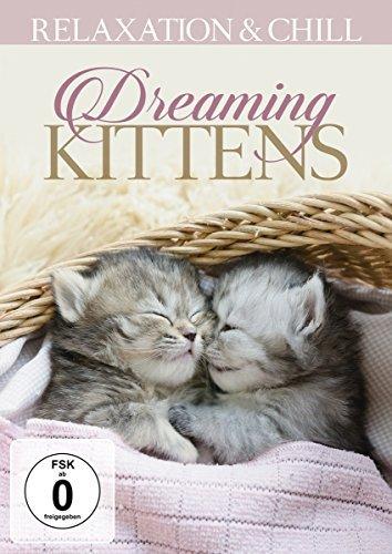 Dreaming Kittens [DVD]