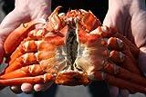 訳あり 【鳥取県境港産】ボイル紅ずわいがに A級品・B級品混合セット(8〜10枚・約3kg)