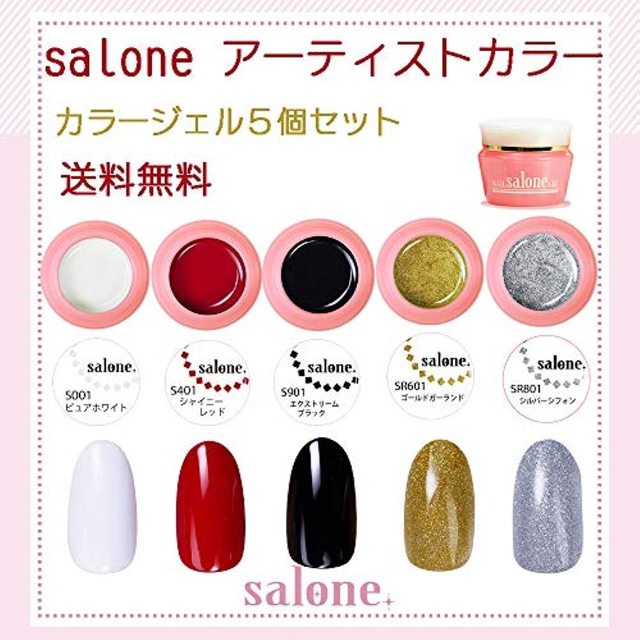 大陸スピン必須【送料無料 日本製】Salone アーティスト カラージェル5個セット トレンドのラインアートにもピッタリなカラー