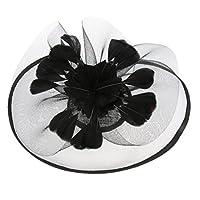 Prettyia 古典的 魅力帽子 カチューシャ ダービー帽 メッシュ 羽の花 人工フェザー パーティー 全5色 - ブラック