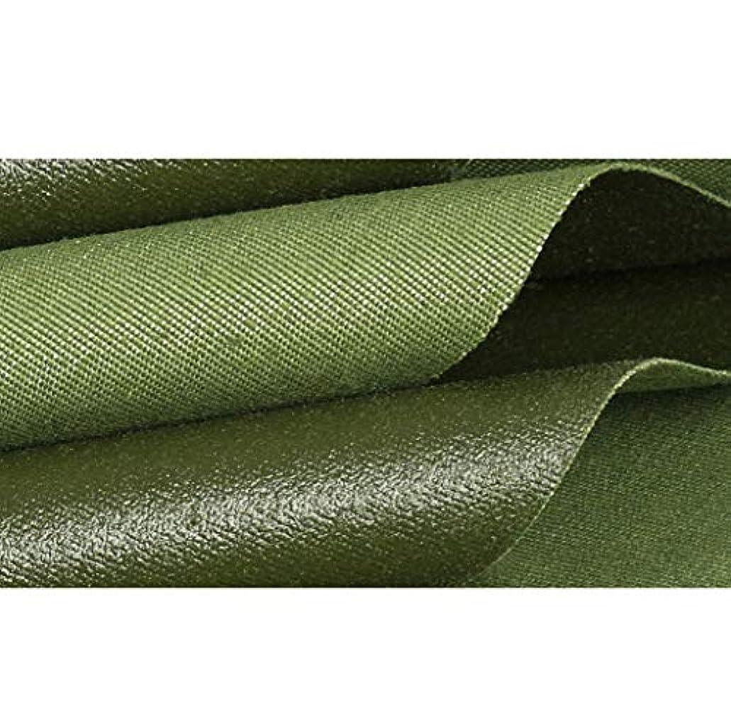 同行する代数的実業家オーニングターポリン テント 緑 厚い レインプルーフクロス 防水 日焼け止め 防錆 耐酸性および耐アルカリ性 温室 アウトドア アースカバー