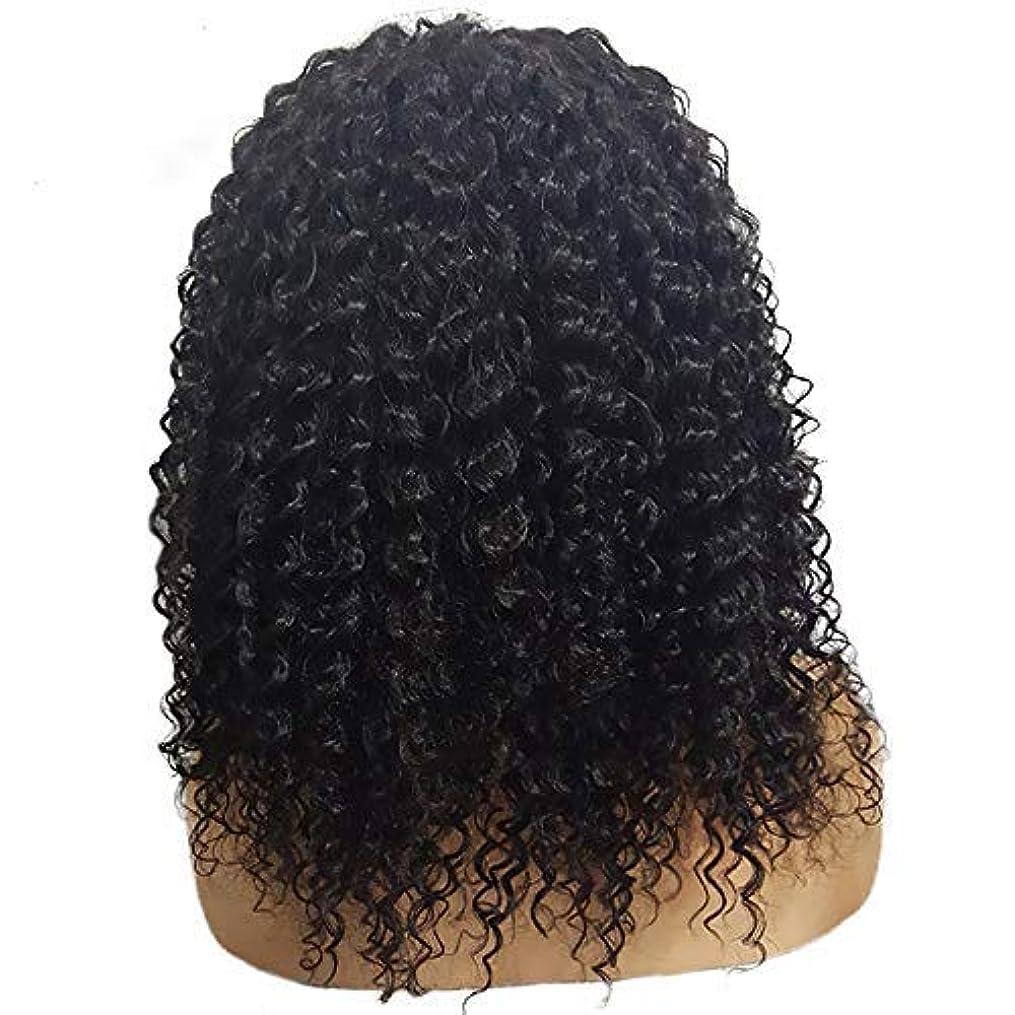 オーバーフロー教師の日嵐かつら短い巻き毛のかつらファッション化学繊維かつらフロントレース20インチ