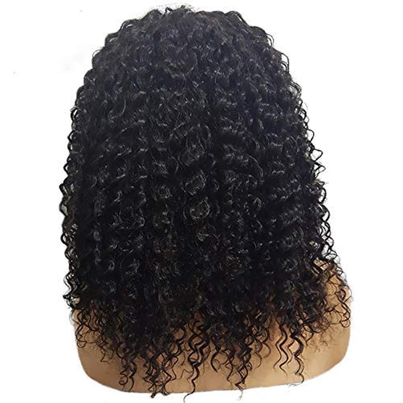進行中乳製品純正かつら短い巻き毛のかつらファッション化学繊維かつらフロントレース20インチ
