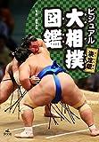 決定版 ビジュアル 大相撲図鑑