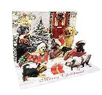メリークリスマス お祝い用マルチドッグブリード ホリデーシーズンお祝い用 5 x 7インチ ホリデーポップアップクリスマスグリーティングカード&封筒