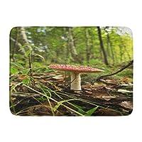 ロシアの伝統のための秋の森の狩猟でドアマットバス敷物屋外/屋内ドアマット美しいキノコの赤い帽子は浴室の装飾敷物を集めることです23.6(L)x 15.7(W)インチ