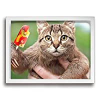 King Duck 猫 アイスクリーム 絵画 インテリア フレーム装飾画 アートポスター 壁画 アートパネル 壁掛け 木枠付き White