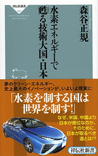 水素エネルギーで甦る技術大国・日本(祥伝社新書)の詳細を見る