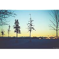 "pigbangbang、29.5X 19.6""プレミアムBasswood明るいカラフルなアート1000Piece Jigsawパズル漫画写真壁画ホーム装飾壁画ホームdecoration-good Morning"