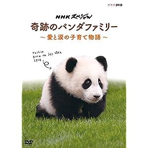NHKスペシャル 奇跡のパンダファミリー ~愛と涙の子育て物語~ [DVD]
