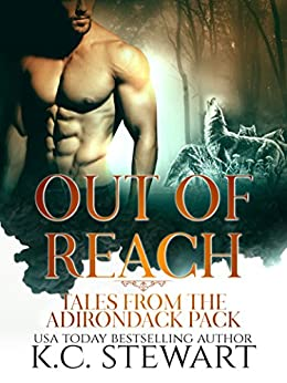 Out of Reach: Tales from the Adirondack Pack by [Stewart, K.C.]
