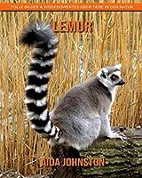 Lemur: Tolle Bilder & Wissenswertes ueber Tiere in der Natur