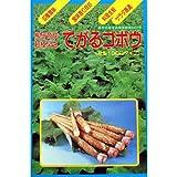 ごぼう 種 【てがるごぼう】 小袋(約8ml)