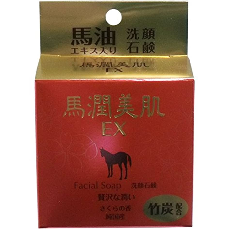肯定的伝染性ブローホール馬潤美肌EX 馬油エキス入り 洗顔石鹸 80g