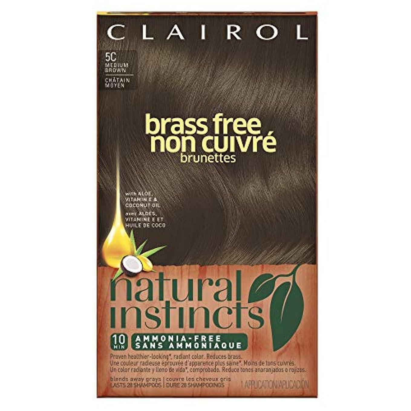 アンペア絶望六Clairol 自然本能真鍮無料ヘアカラー、ミディアムブラウン[5C] 1 Eaは(6パック) 6パック 褐色