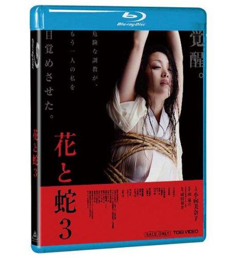 花と蛇3 [Blu-ray]