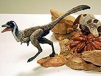 Beasts of the Mesozoic: Raptor Series Environment Accessory Pack 02 Desert (製造元:Creative Beast Studio) [並行輸入品]