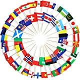 Anley Assorted 100 Different Countries Toothpick Flag - Vivid Double Sided Print & Solid Smooth Pick - Party Decoration Cocktail Fruit Stick Cupcakes Toppers(100 pcs)