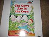 Cows Are in the Corn