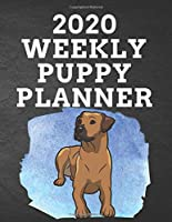 """2020 WEEKLY PUPPY PLANNER: 8.5""""x 11"""" 115 Page Rhodesian Ridgeback Dog Lover Gift with Blue on Black Back Academic Year At A Glance Planner Calendar With To-Do List and Organizer And Vertical Dated Pages Brown Pupper  on Splash of Blue (Rhodesian Ridgeback 2020 Planners)"""