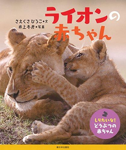 ライオンの赤ちゃん (しりたいな!  どうぶつの赤ちゃん)の詳細を見る