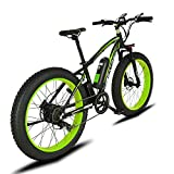 Cyrusher XF660 FATBIKE 17×26インチ マウンテンバイク アルミフレーム 48V16An 1000W 電動アシスト自転車シマノ7段変速