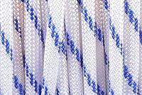 BoredParacordブランド550lb Racing Stripesパラコード( 50フィート)