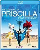 集団行動におけるキャラ付けの大切さを、映画『プリシラ』で学ぶ